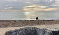Waterside Natural History Society visit to Highcliffe in Dorset